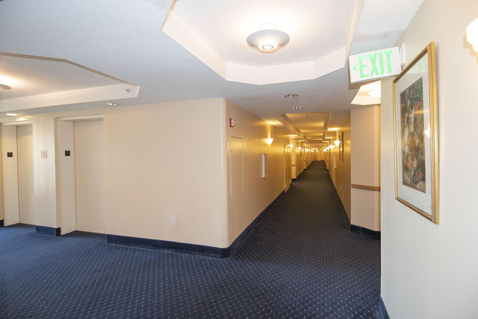 7th Floor (Hallway)
